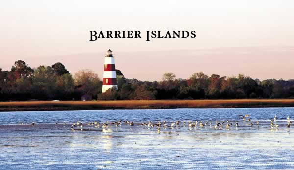 The Natural Georgia Series: Barrier Islands. Photo by Richard T. Bryant. Email richard_t_bryant@mindspring.com.