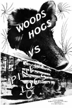 In the 1930s and '40s, the U.S. Forest Service  distributed brochures like this one to explain  the damage free-range hog grazing causes  in longleaf pine forests.