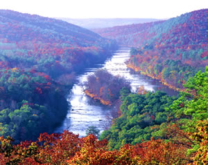 The view of the Flint River from Sprewell Bluff near Thomaston. Photo by Richard T. Bryant. Email richard_t_bryant@mindspring.com