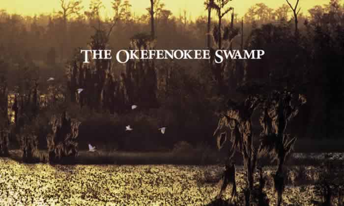 Click to read The Okefenokee Swamp.